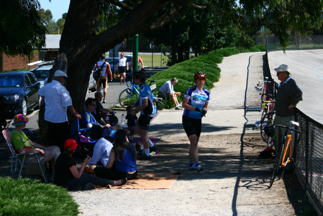 On a sunny day the shady tree was popular